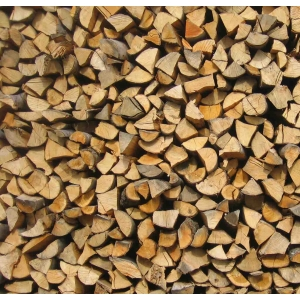 Why choose a wood burning stove?